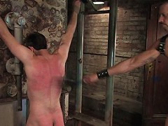 Dante pushes his limits by receiving an extreme caning and a relentless cattle prodding.